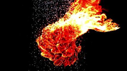 Shower and fireball meeting
