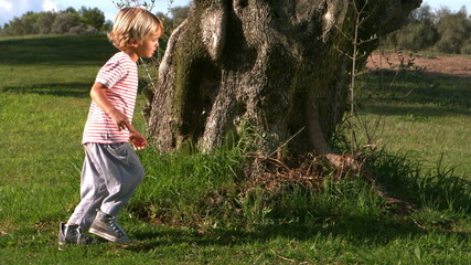 Child running around a large tree