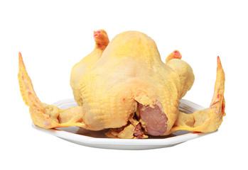 poulet mort