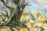 watercolor landscape of forests with big tree trunk and rocks