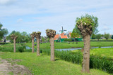 Windmills at the Zaanse schans