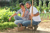 Couple picking produce in a vegetable garden