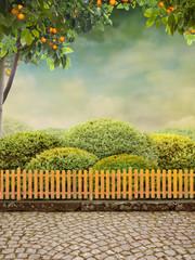 Beautiul Garden