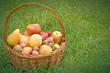 Apples in wicker basket on the grass
