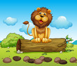 A happy lion on a trunk of a tree