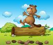 A dancing beaver