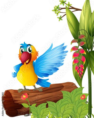 """""""u9ec3u8272""""]分支剪贴画动物图图像图形孤立插图森林植物橙色漫画"""