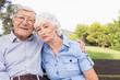 Portrait of happy elderly couple sitting on bench