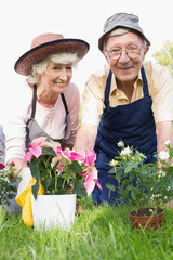 Portrait of gardening couple