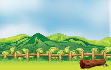 A mountain view across a wooden fence