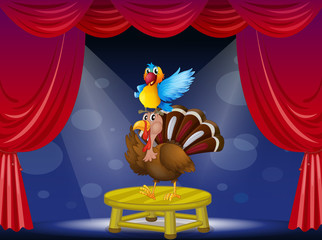 A parrot and a turkey at the stage