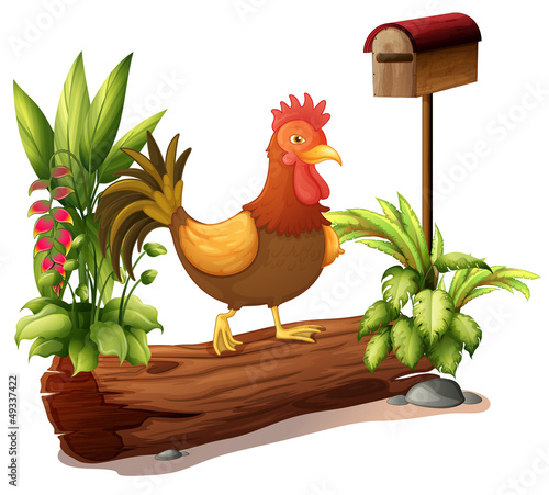 A rooster above a trunk
