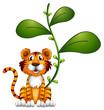A tiger beside a vine