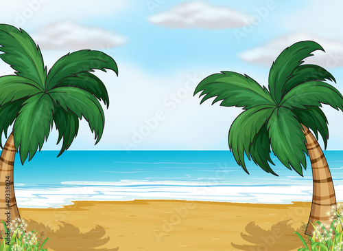 Coconut trees in the seashore