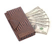 brown leather wallet with dollar isolated