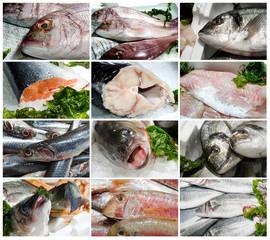 pesce fresco vario