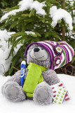 Teddy bear  with a thermometer and pill in snow