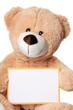 Teddy mit leerem Schild