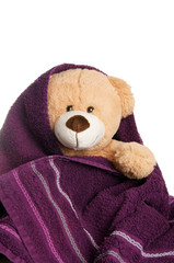 Teddy with towel