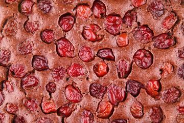 close up of chocolate cherry tart