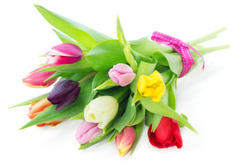 Bouquet of mixed tulips