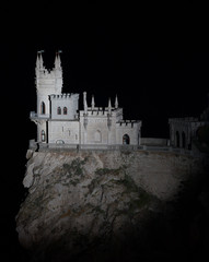 Nighttime photos of well-known castle Swallow's