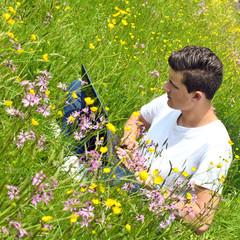 Konzentrierte Arbeit an Notebook im Sommer auf Wiese