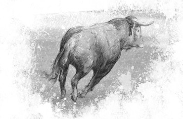 Art illustration, Spanish bull in the bullring with sand
