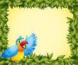 A colorful parrot and the green leafy frame