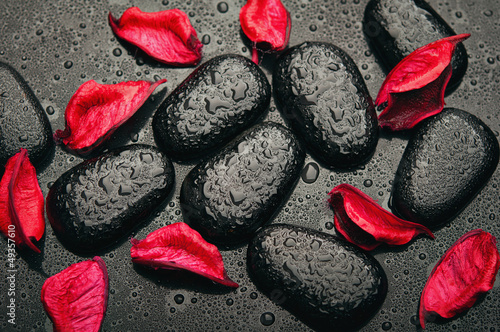 background spa. black stones and red petals with water droplets