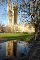 Victoria Tower reflected in puddle