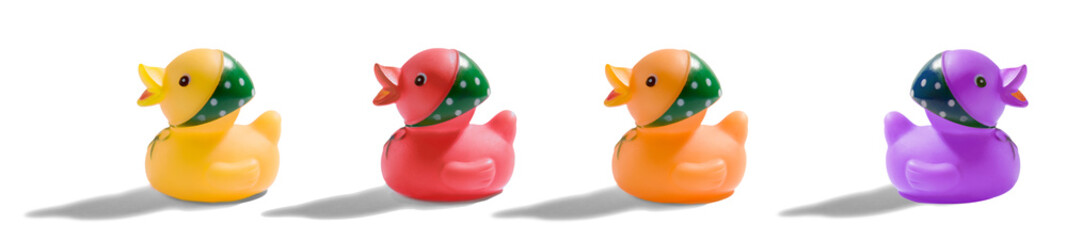 Colourful rubber duck banner