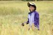 Girl harvesting rice