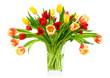 Pfiffiger Tulpenstrauß, Freisteller
