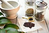 Officinal herbs - 49368640
