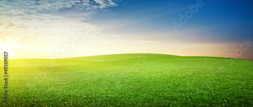 canvas print picture Panoramic meadow