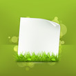 Grass and paper