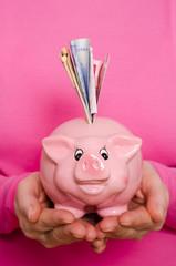 Euroscheine und ein rosa Sparschwein