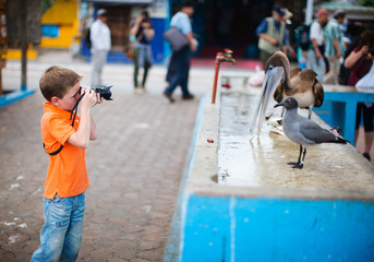 Boy photographing at seafood market