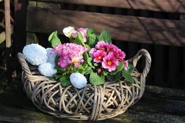 Primelkörbchen zu Ostern