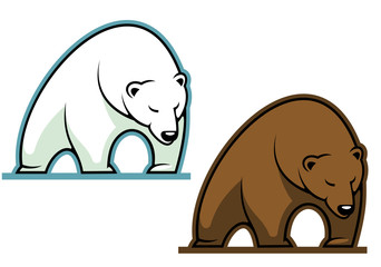 Big kodiak bear