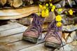 Wanderschuhe auf einem Holzstapel