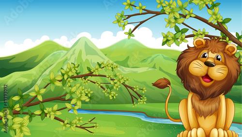 In de dag Indiërs A lion and a mountain