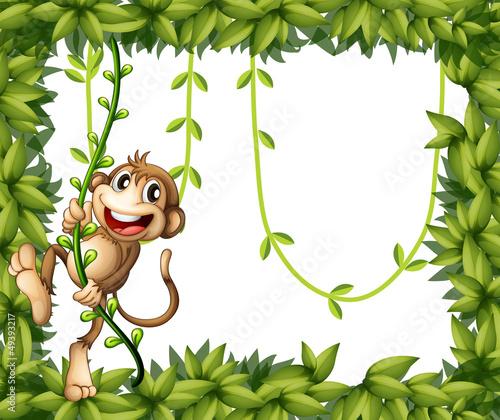 A monkey in a leafy frame