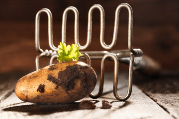 Fresh earthy farm potato and masher
