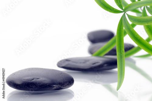 Fototapeten,steine,bambu,wellness,massage
