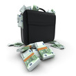 Briefcase with lots of cash, hundred euro bills
