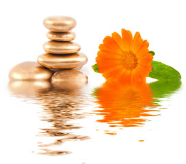Golden spa stone and calendula