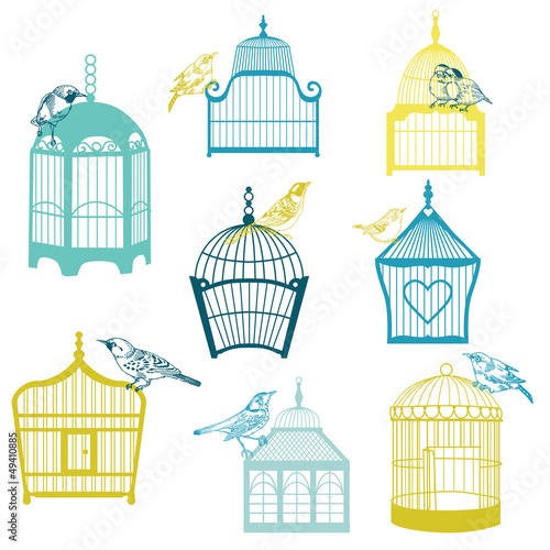 Birds and Birdcages Collection - for design or scrap -vector