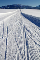Wintersport - Skating im Allgäu